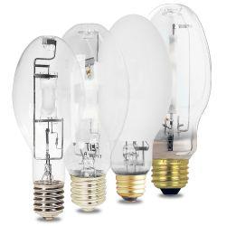 Hid Light bulbs